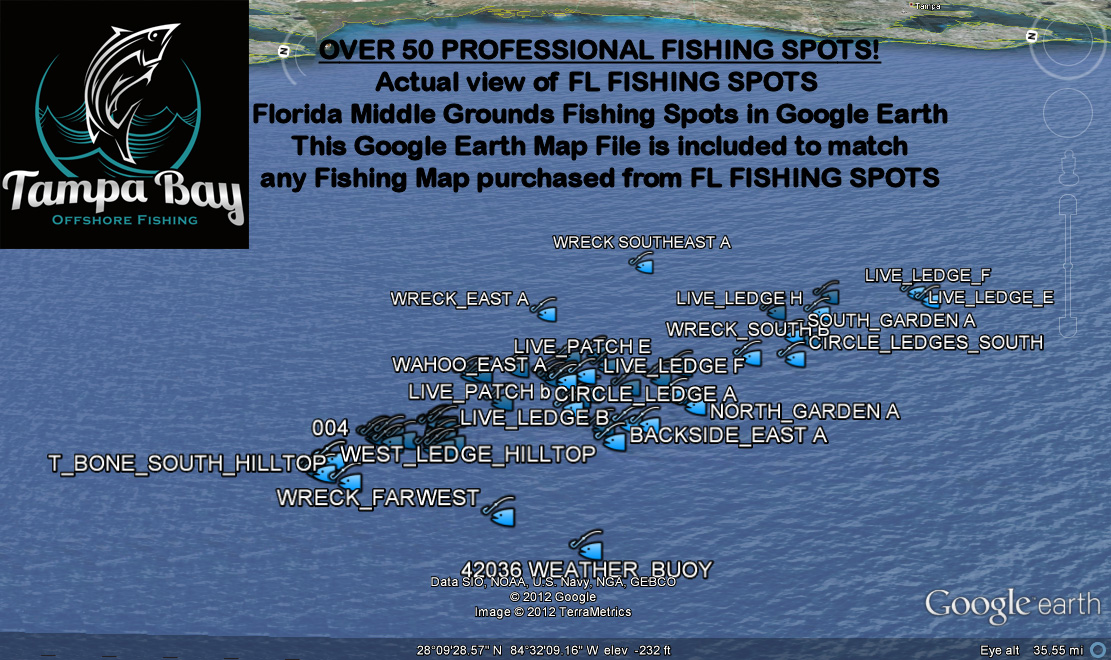 middle grounds fishing charters tampa bay offshore fishing