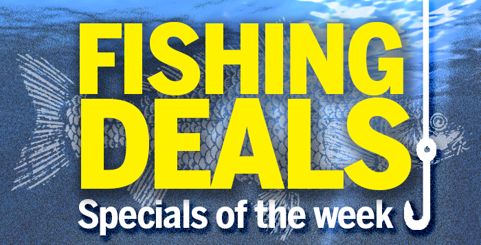 Charter fishing deals tampa for Fishing for deals