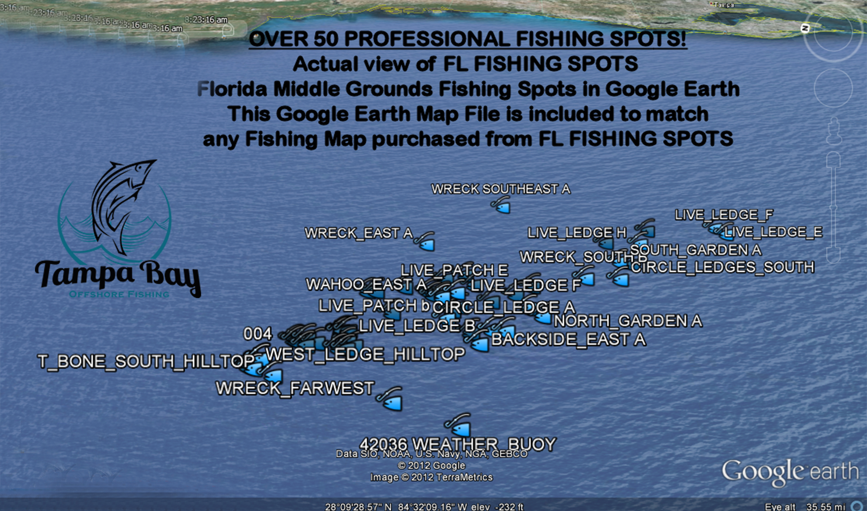 Middlegrounds deep sea fishing tampa bay offshore for Florida fishing vacations