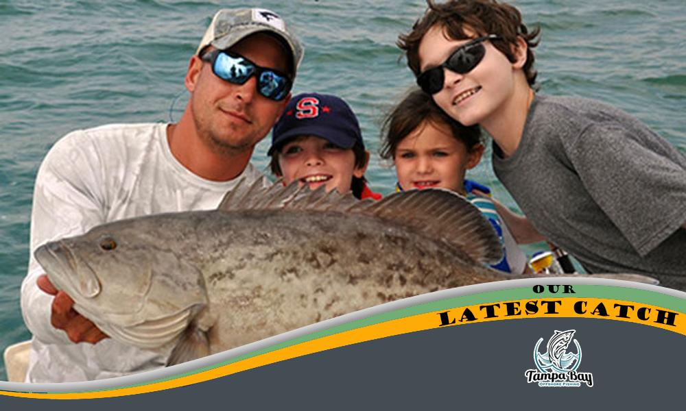 Tampa bay fishing january 2016 for Tampa deep sea fishing