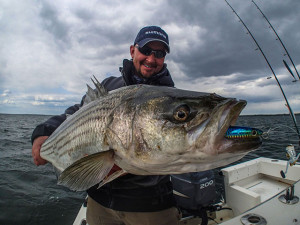 striper charter fishing