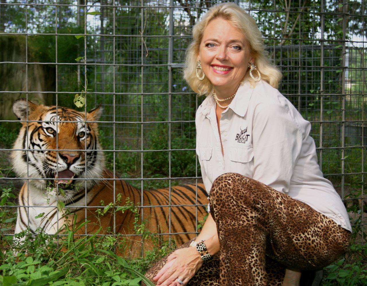 Wild Cat Rescue Tampa