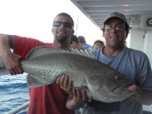 middle grounds gag grouper