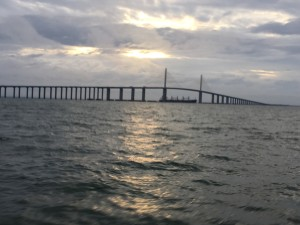 tampa bay fishing