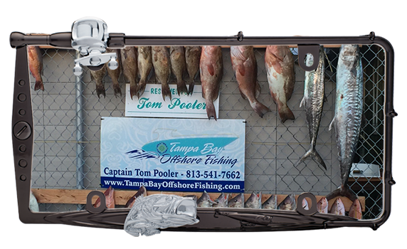 tampa bay offshore fishing