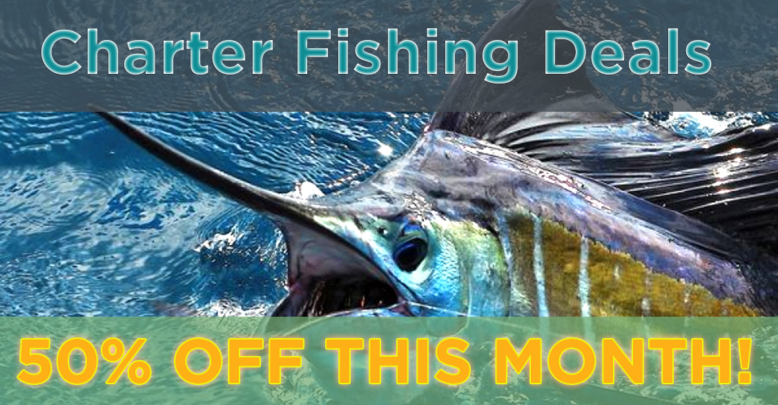Charter fishing deals tampa for Deep sea fishing tampa
