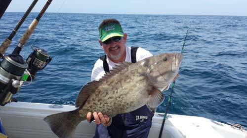 clearwater fishing trips and charters