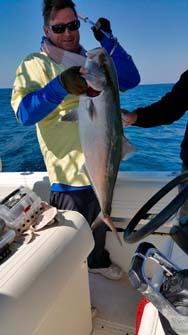 tuna charter
