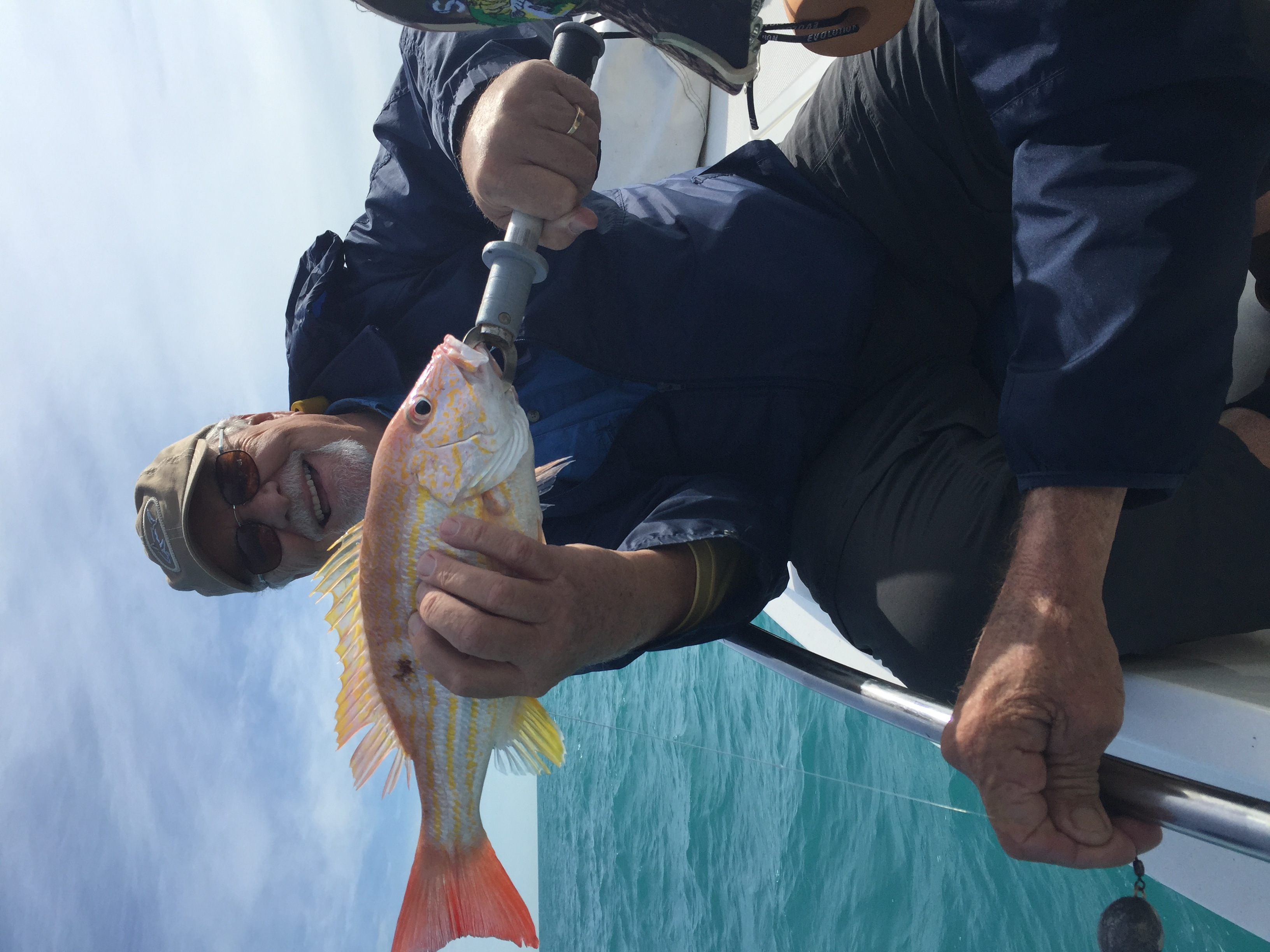 Snapper charters tampa bay for Tampa florida fishing charters