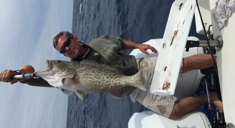grouper charters