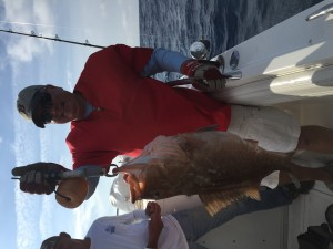 grouper fishng charter in tampa florida