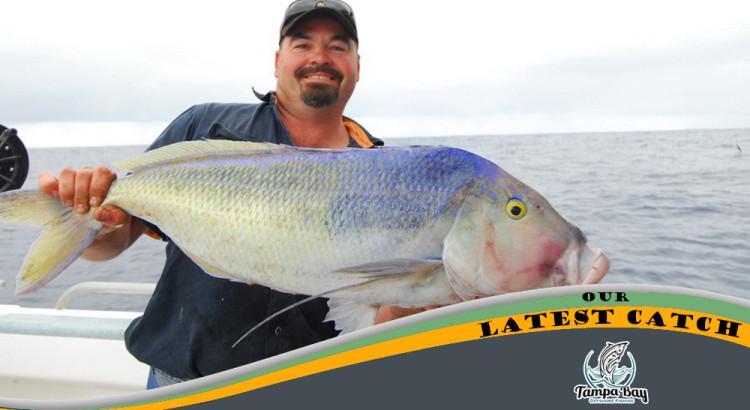 Deep Sea Fishing | December 8th 2015