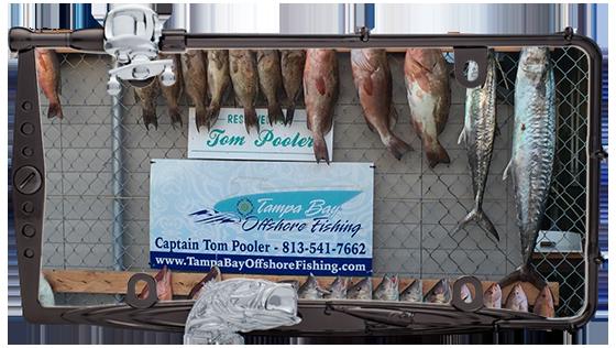 gulf of mexico charter fishing