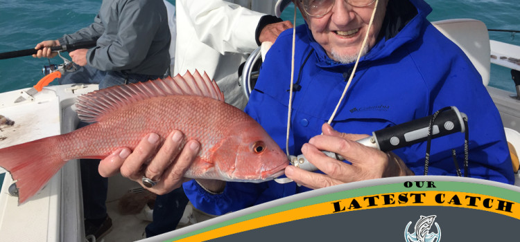 Huge Lane Snapper! – Great Day In Tampa Bay