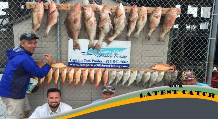 BEst fishing captain charter